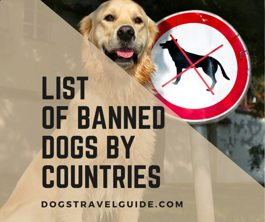 countries that dont allow dogs
