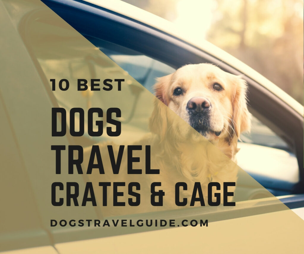 dogs travel crates and cages
