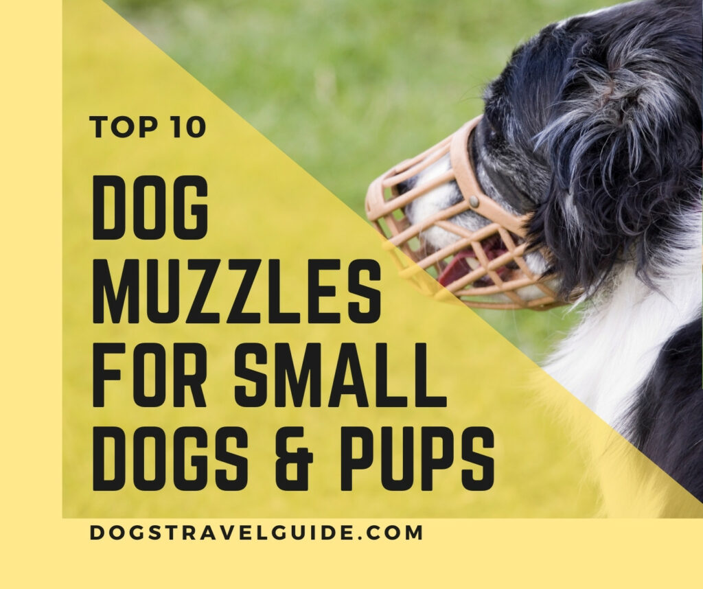 muzzles for smaller dogs and pups