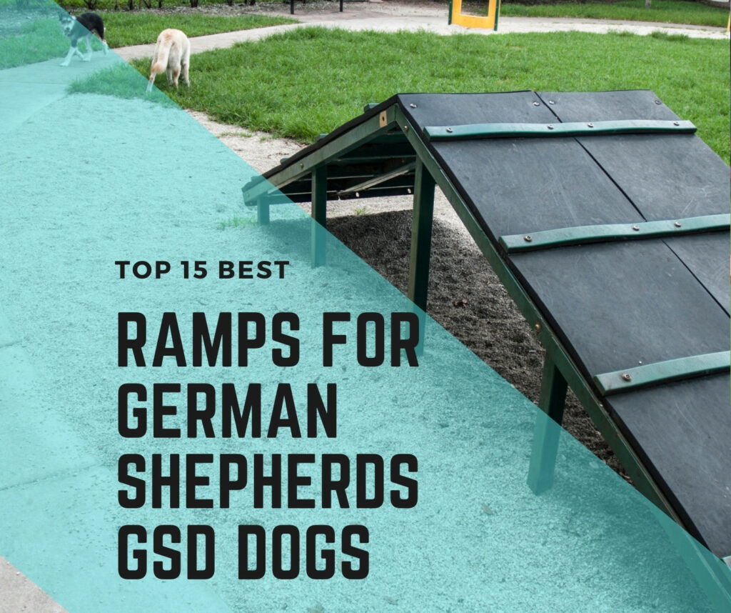 Dog Ramps for Cars, Beds, and Multipurpose